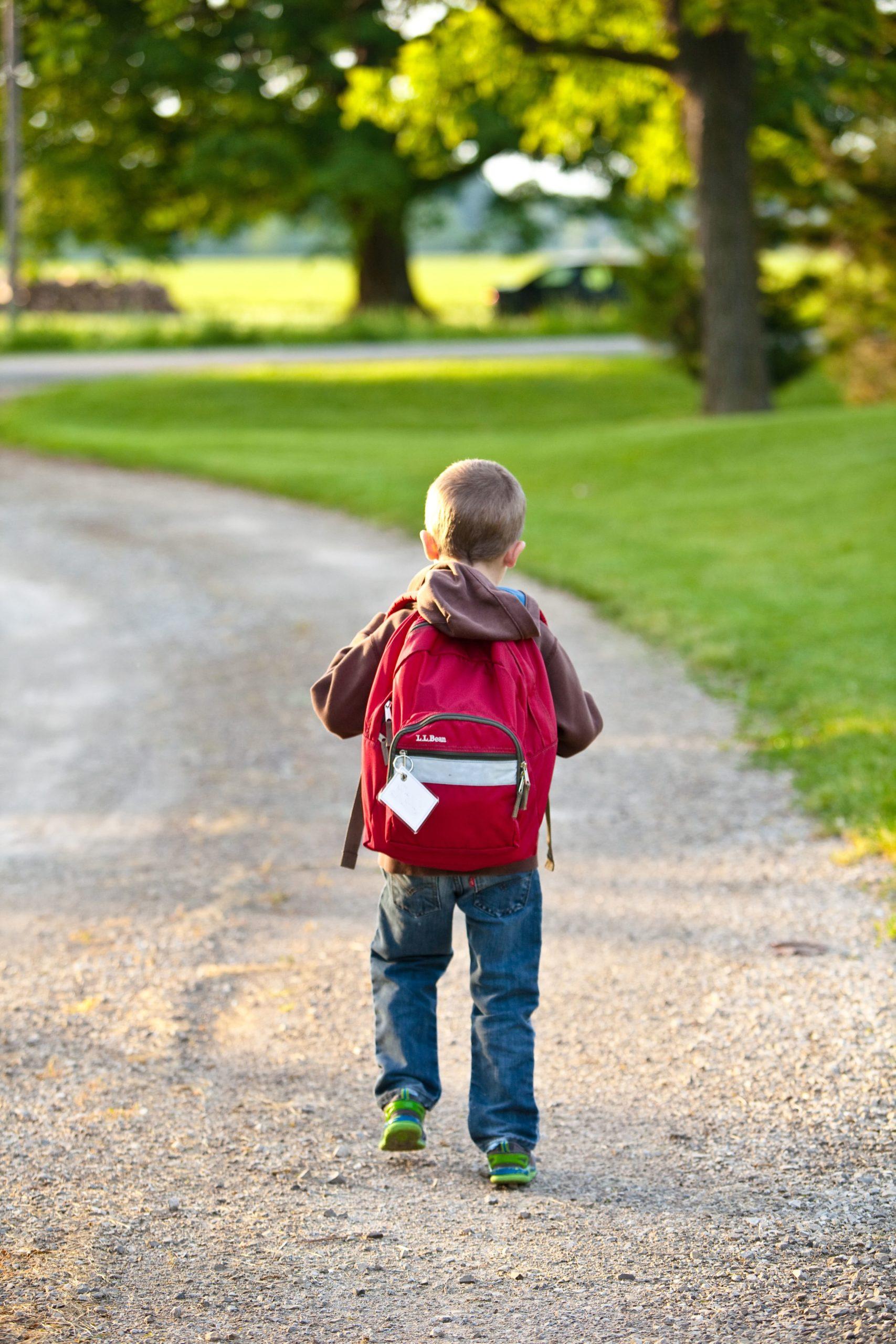 bambino di spalle in un prato cammina verso la scuola